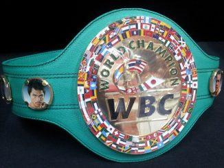 Усик поднялся на вторую строчку в рейтинге WBC.