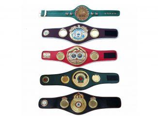 Действующие чемпионы по боксу