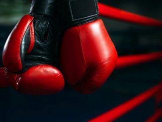 Интересные бои бокса этого года
